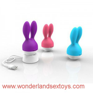 Clitoris & Breast Vibrator,Clitoris Messager