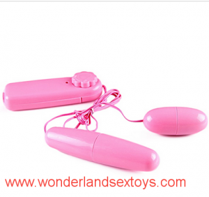 Double Jump Egg Vibrator Bullet Clitoral G Spot Toy