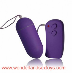 Wireless Remote Control Love Egg Vibrator Waterproof Sex Toy